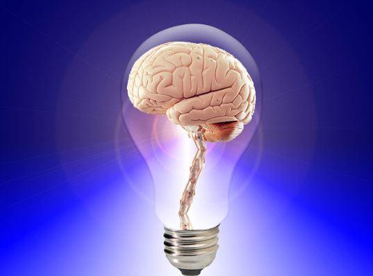 Ilmu Bisnis yang Mampu Membuat Usaha Anda Sukses