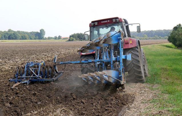 Peluang Usaha Agribisnis Modal Kecil