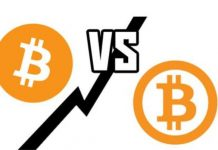 Perbedaan Bitcoin dan Bitcoin Cash