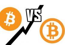 4 Perbedaan Bitcoin BTC dan Bitcoin Cash BCH