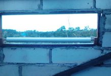 Cara mengusir burung hantu dari gedung walet