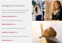 Variasi Asuransi Prudential, Proteksi Keuangan Anda